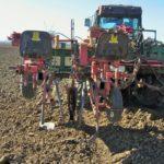 Plantação de Vinha com Maquina